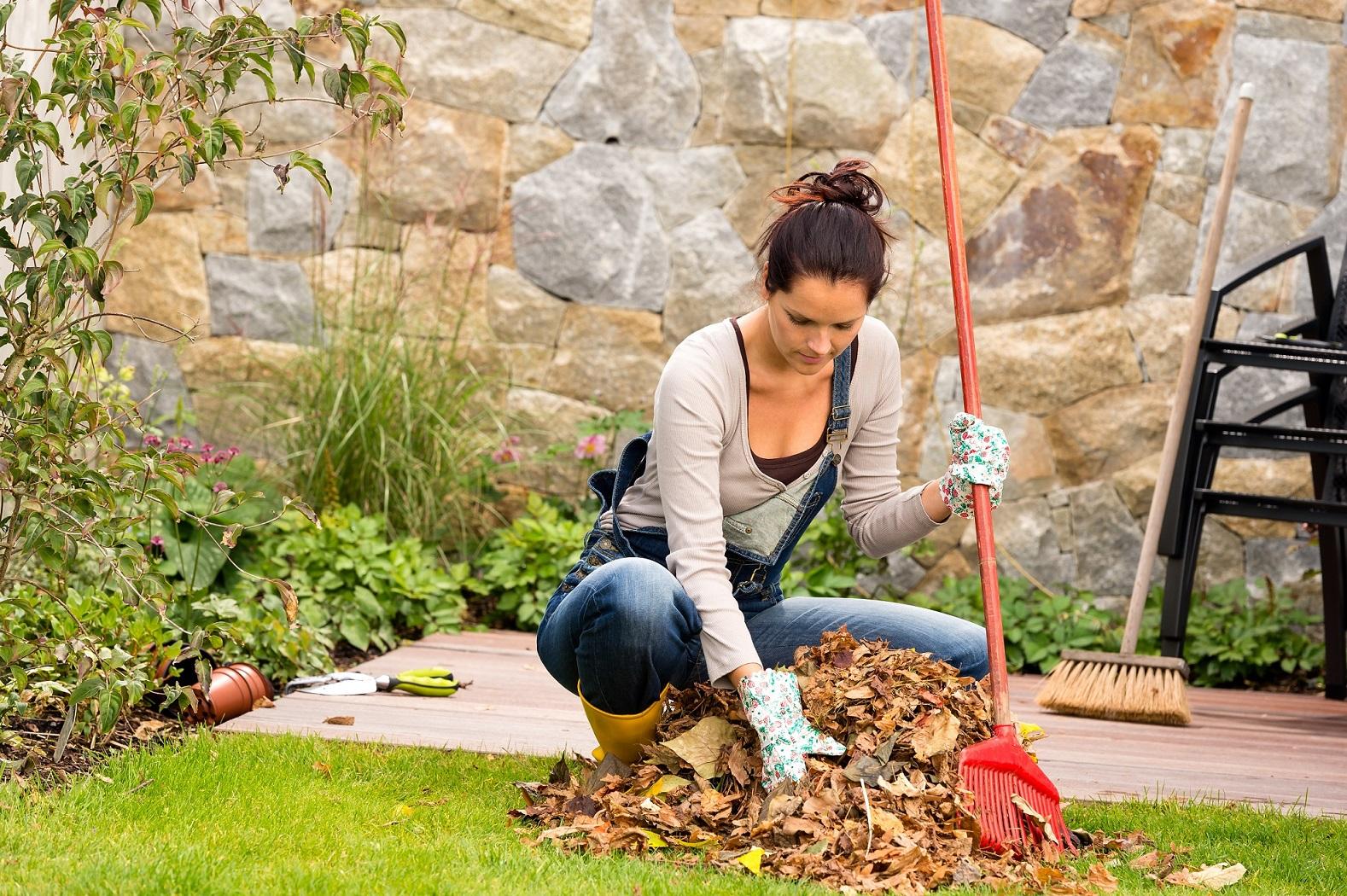 nettoyage feuilles automne, jardinage, entretien jardin,jardinier, Nid'Dom Anglet, Niddom, Bayonne , Biarritz